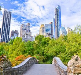 new-york-featured4