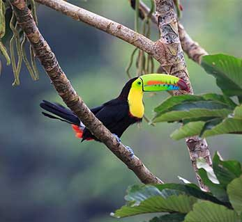 costa-rica-featured1
