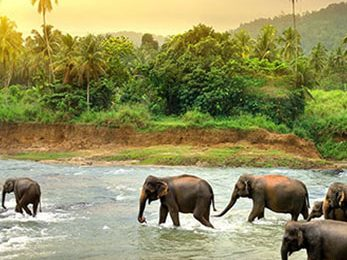 sri-lanka-featured7