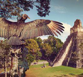guatemala-featured3
