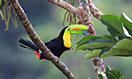 costa-rica1-megamenu