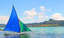 mauritius-megamenu