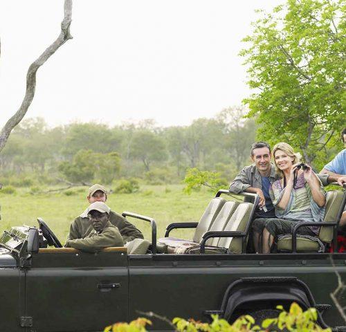 southafrica-safari-leopard