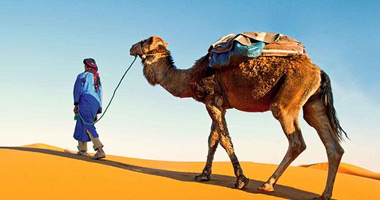 Destination Marocco
