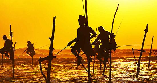 Destination Sri Lanka