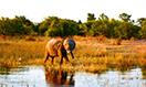 zimbabwe-megamenu